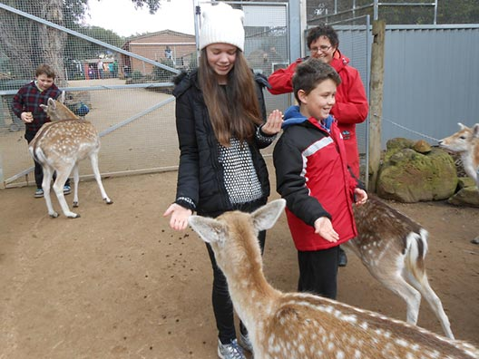 Halls Gap Zoo, You'll be Surprised!